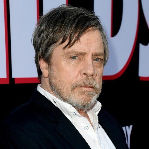 'Star Wars'' Mark Hamill and Adam Driver team up to find missing dog
